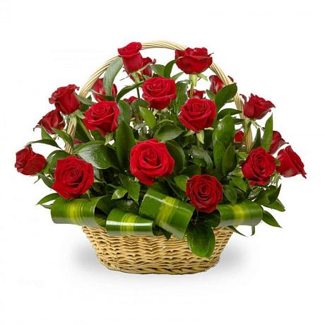 Корзина из 33 красных роз с зеленью